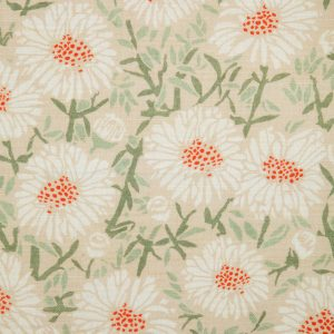 Daisies by Emily Burningham