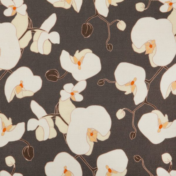 Orchid Charcoal by Emily Burningham